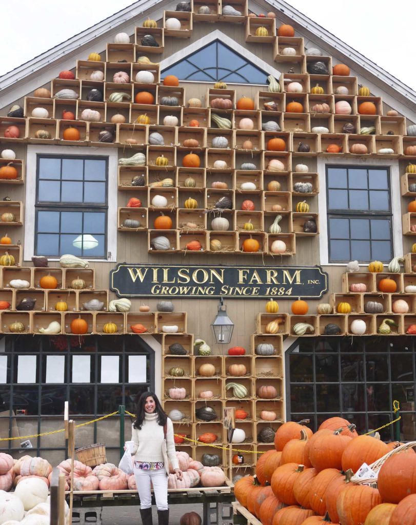 Wilson Farm - Pumpkin Boston